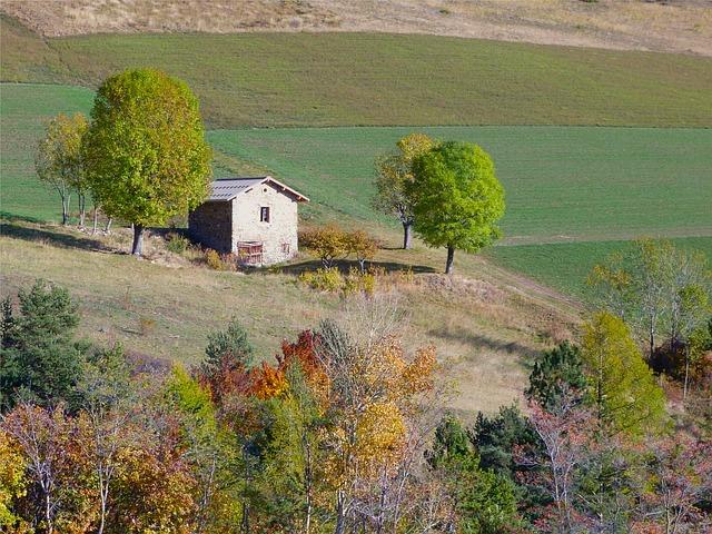 郊外の空き家
