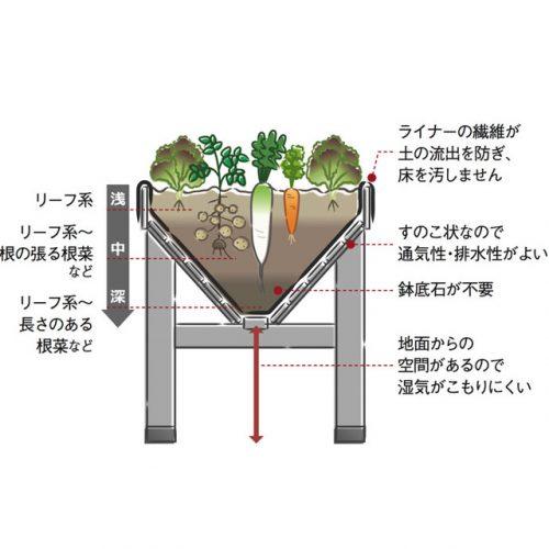 ベジトラグの構造